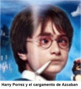 HARRY Y SU POTTER MADRE